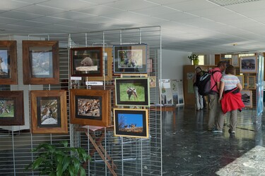 © maison-franco-italienne-val-cenis - <em>Haute Maurienne Vanoise</em>
