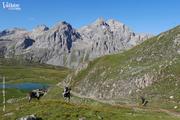 © 12e Trail du Galibier-Thabor - <em>X. Aury / Ot Valloire</em>
