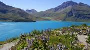 © val-cenis-mont-cenis-jardin - <em>DR. OT Haute Maurienne Vanoise</em>