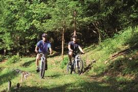 Tour de Montgilbert en vélo à assistance électrique