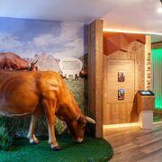 © Expo 3 Carte Blanche - <em>Coopérative laitière BSM</em>