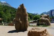 """© """"Marmotte - réconcilier les hommes à la vie sauvage"""" - L. De Bazelaire / S. Bertrand - <em>X. Aury / Valloire Tourisme</em>"""