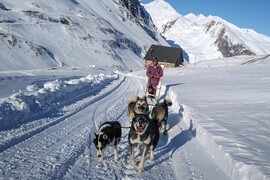 Mad Dogs Sport Aventure