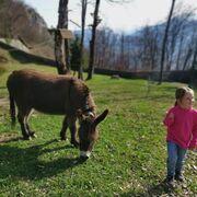 © Les enfants rencontrent la faune - <em>Fort de Tamié</em>